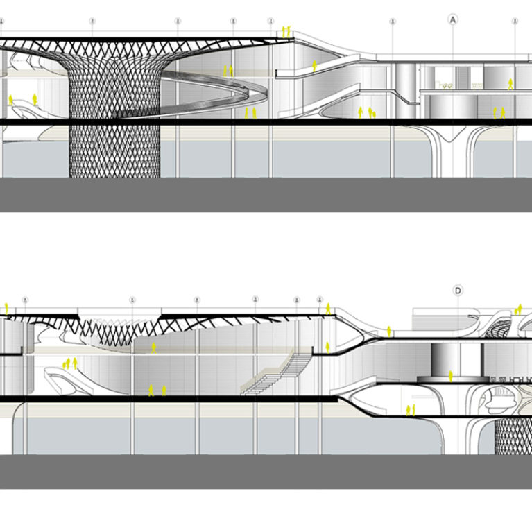 AQSO arquitectos office. The sections show the fungiform roof structure, the floating façade and the interior walkways and ramps connecting the interior of the pavilions and the roof.