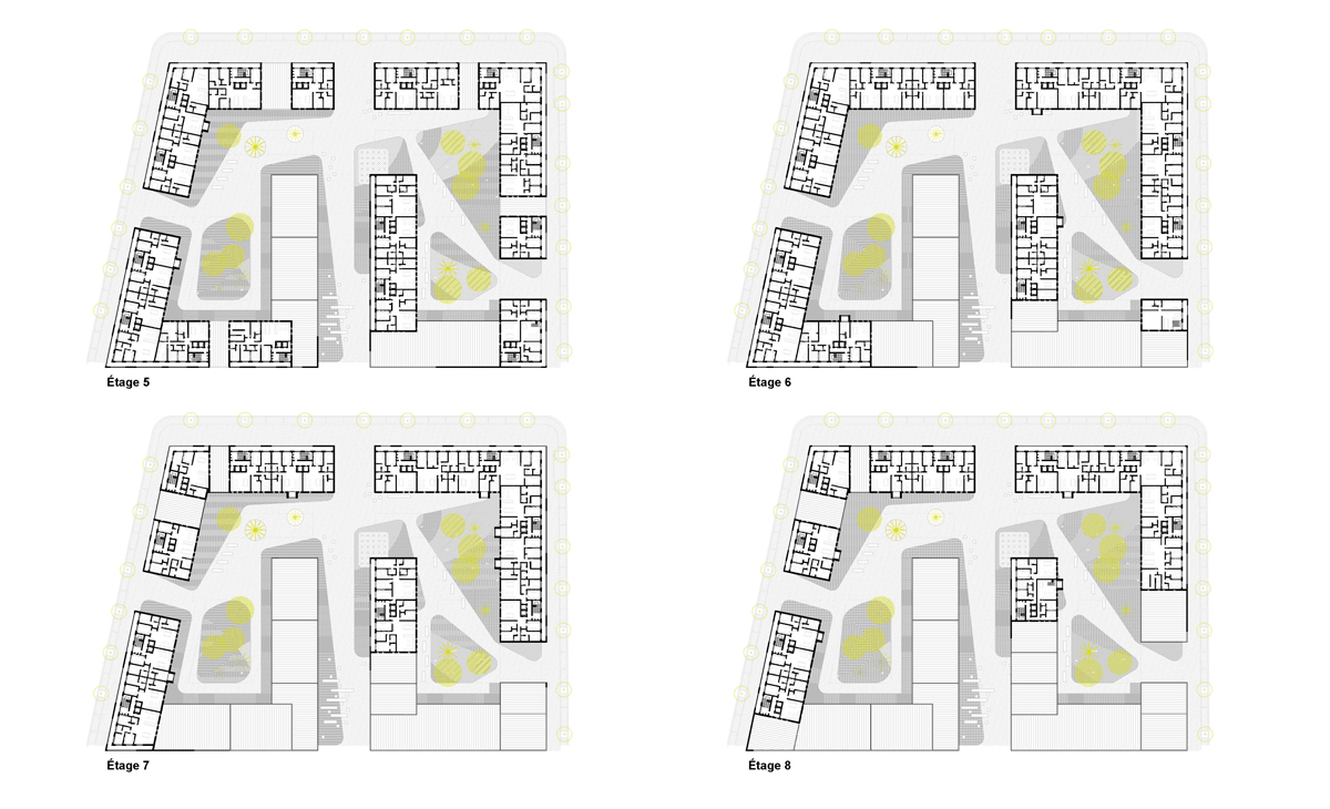AQSO anfa residential floor plans, apartments and roof terraces
