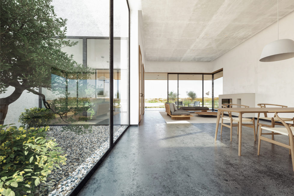 aqso arquitectos office, courtyard house, olive tree, open plan living room, double heigh space, dinning area, big glazing, concrete ceiling, nature at home