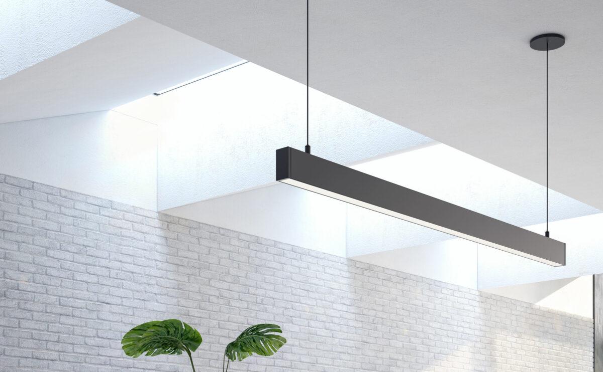 the skylights